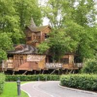 tree house venue